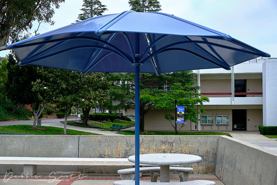 Did you guess the underside of an umbrella?