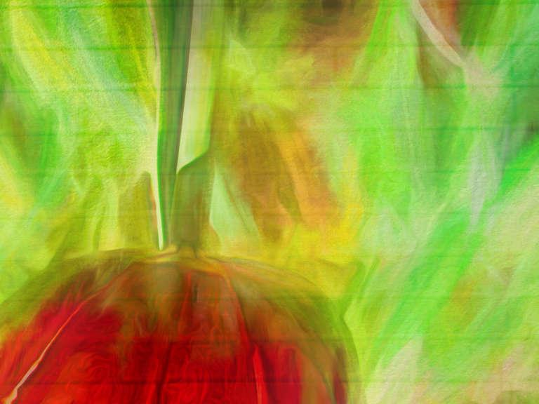 Parrot Tulip 2
