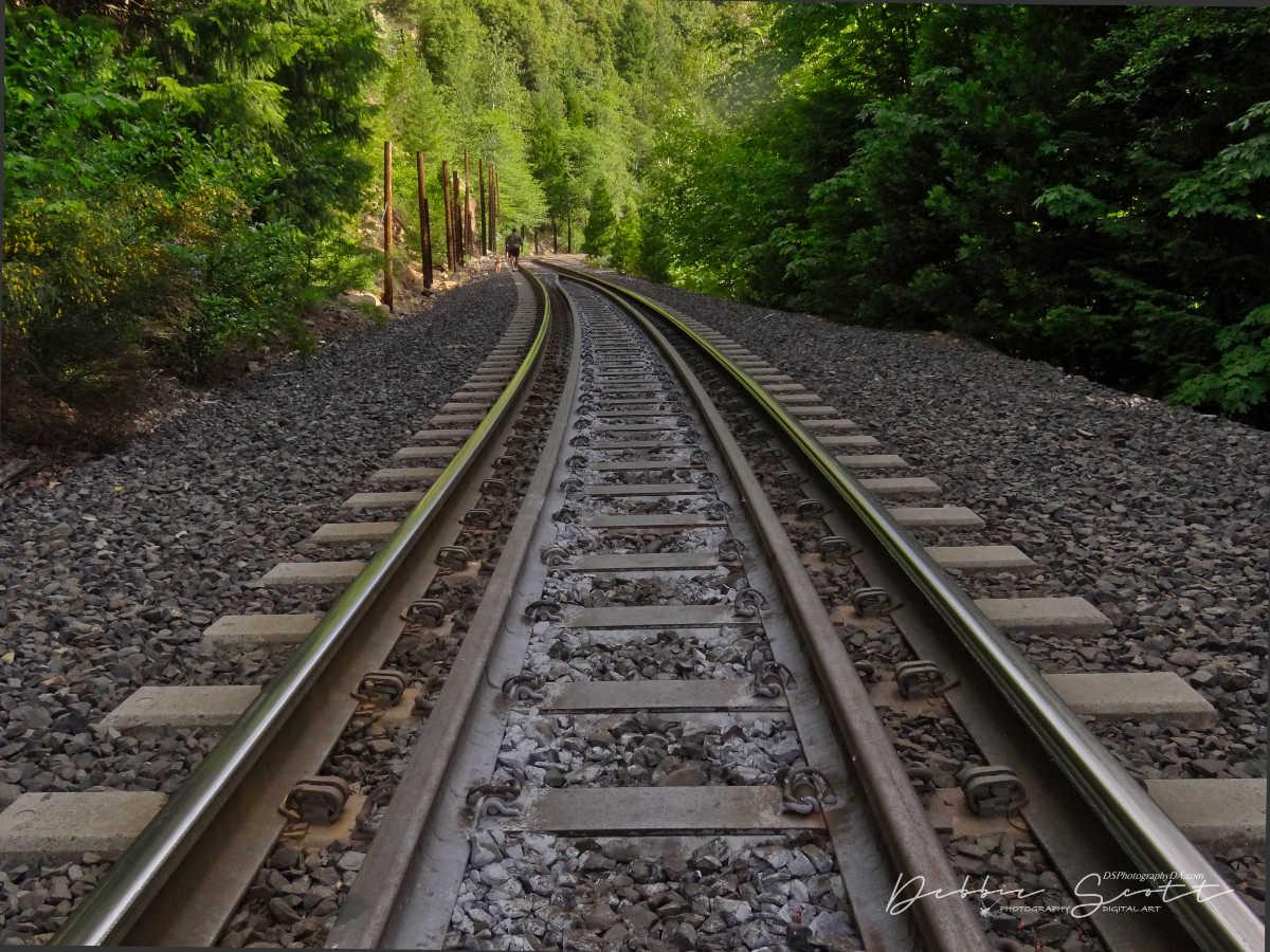 WPC Lines - Train Tracks