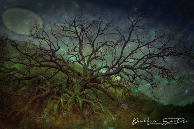 Otherworldly Tree