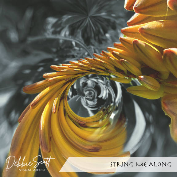 String Me Along