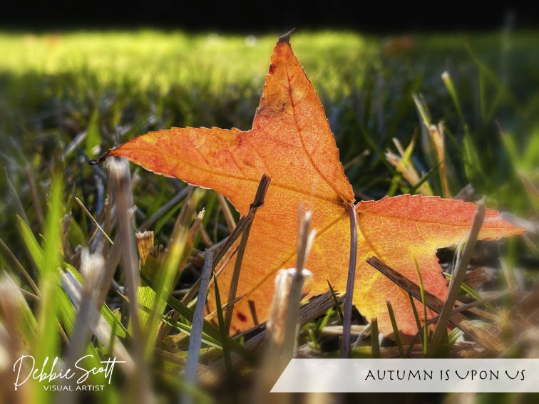 Autumn is Upon Us