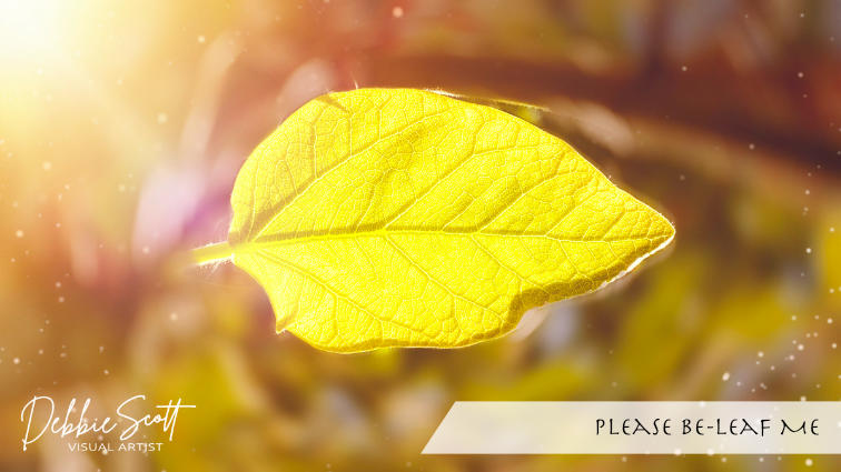Please Be-Leaf Me