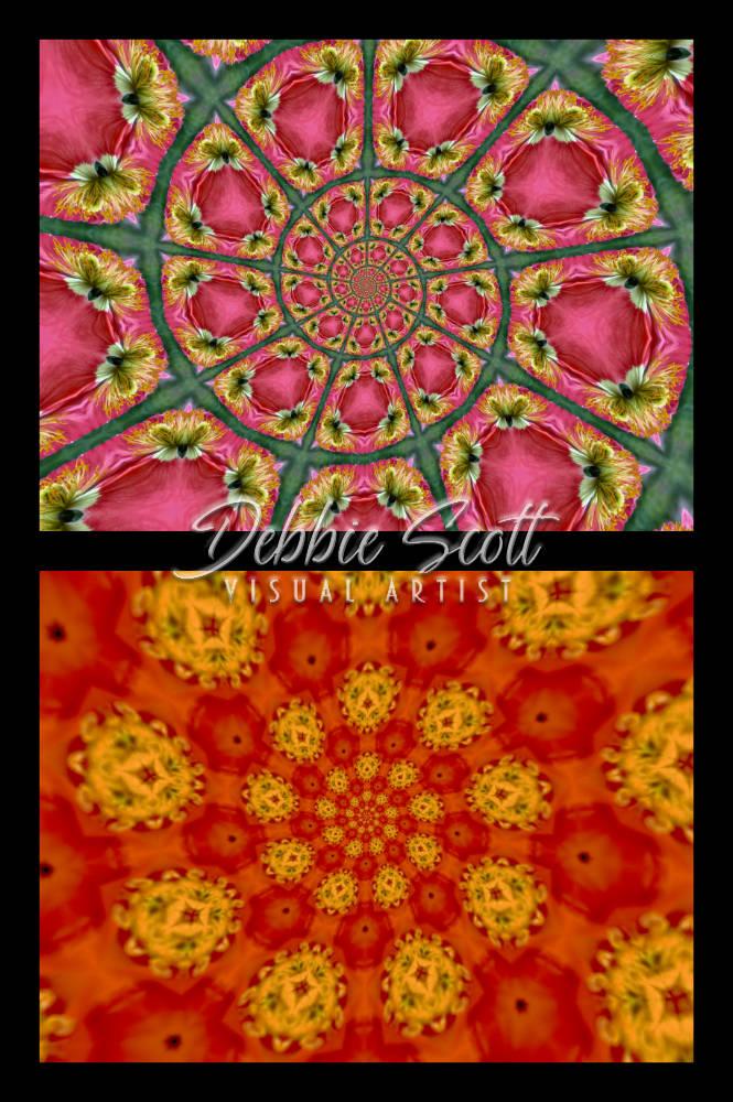 Iceland Poppy Kaleidoscopes